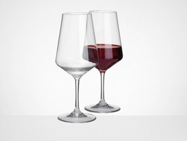 Flamefield Savoy Unbreakable Polycarbonate Large Wine Glass 2 Pack